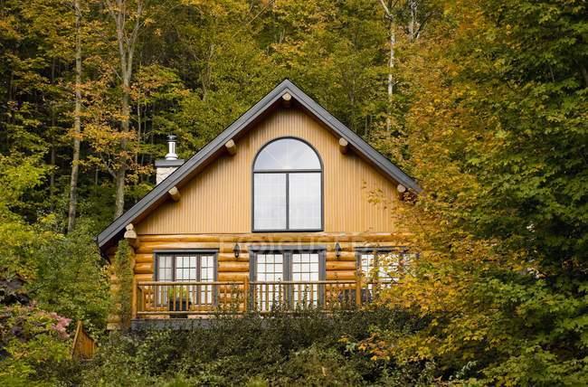 Casa di tronchi, circondata da alberi — Foto stock