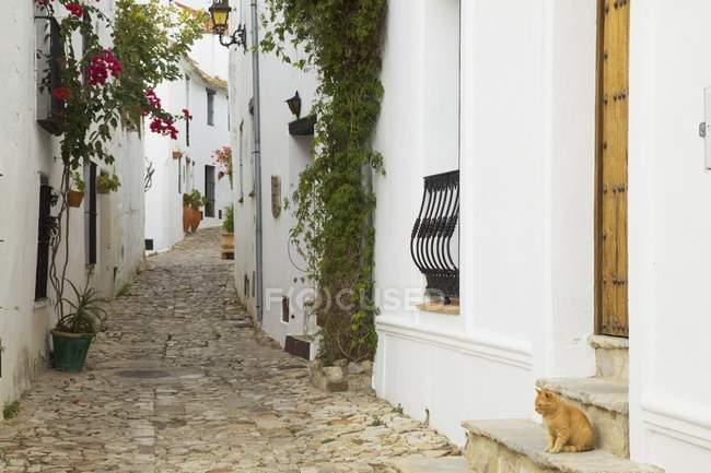 Castellar De La Frontera, Andalusia — Foto stock