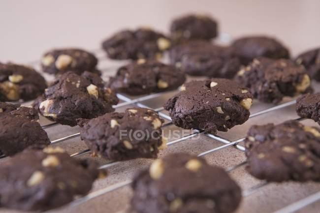 Cookies de chocolate Closeup de refrigeración rack - foto de stock