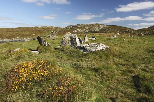 Standing Stones Sherkin ilha — Fotografia de Stock