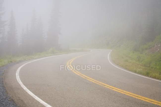 Estrada nevoenta de Mount Rainier National Park — Fotografia de Stock