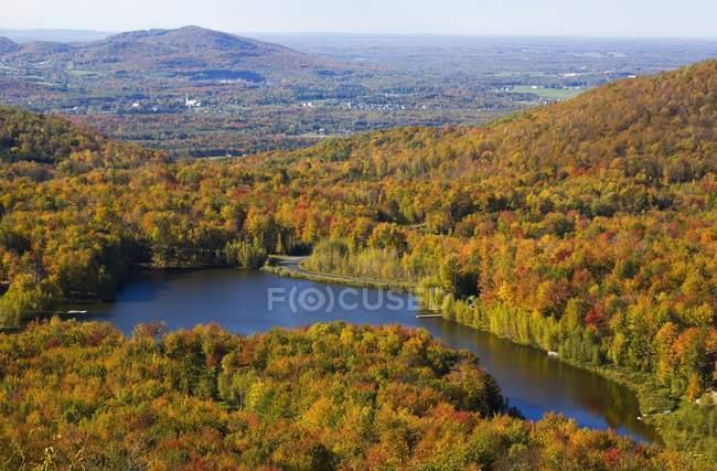 See, umgeben von Wald — Stockfoto