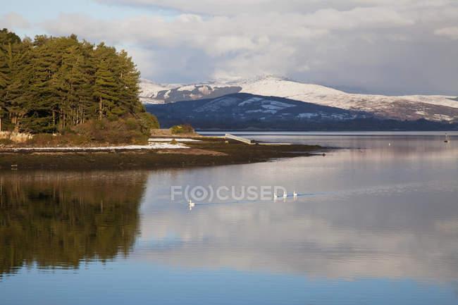 Хмара роздуми на озері — стокове фото