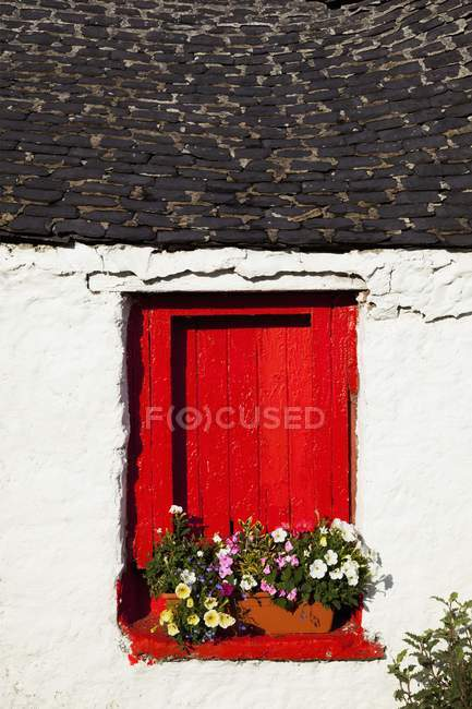 Red Window Shutters — Stock Photo