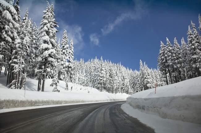 Снежная дорога Алонг — стоковое фото