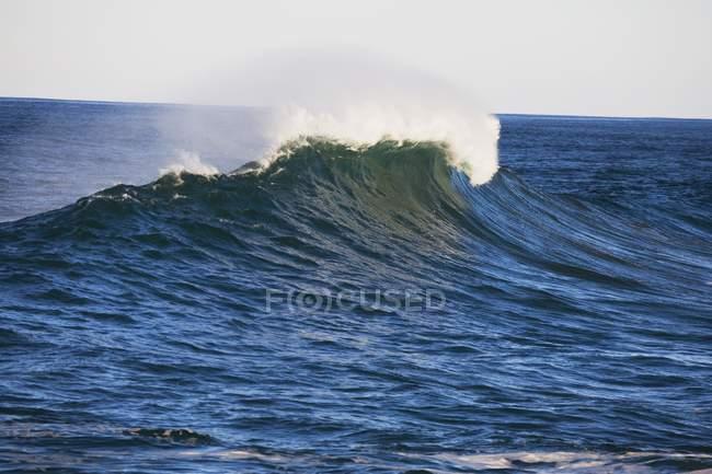 Волна катится в океане — стоковое фото