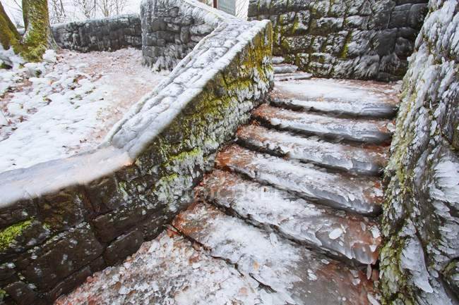 Icy Steps By Latourell Falls — Stock Photo