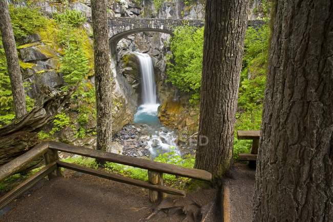 Wasserfall auf Klippe mit Bäumen — Stockfoto
