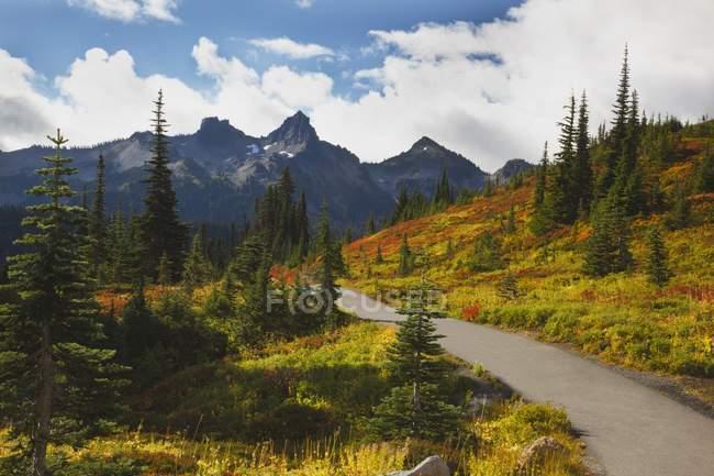 Tatoosh Berge In Mt. Rainie — Stockfoto