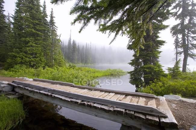 Mount Rainier National Park — Stock Photo