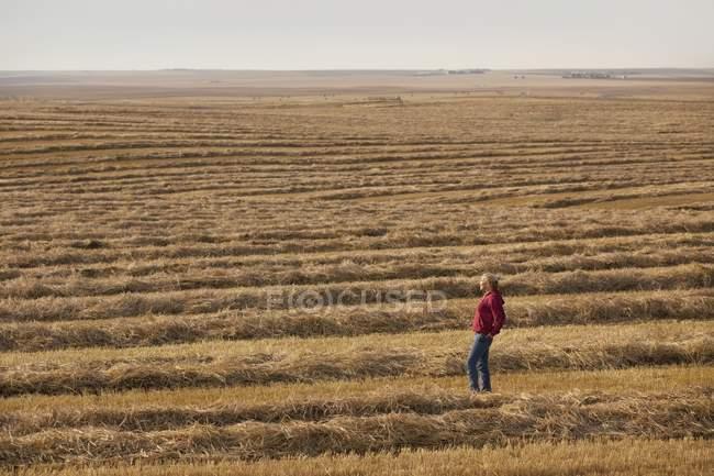 Женщина стоит в поле — стоковое фото
