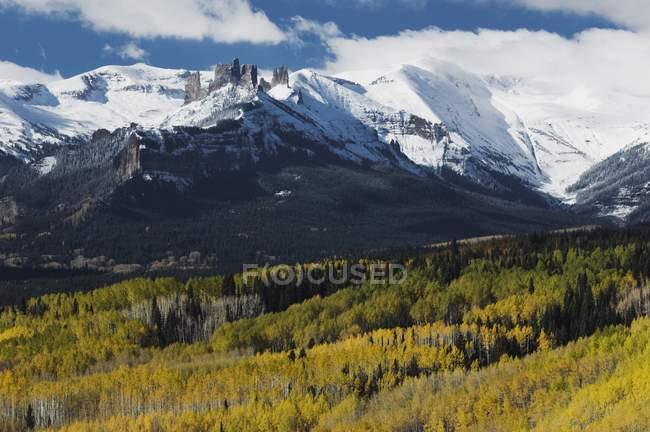 Gunnison National forest — Stockfoto