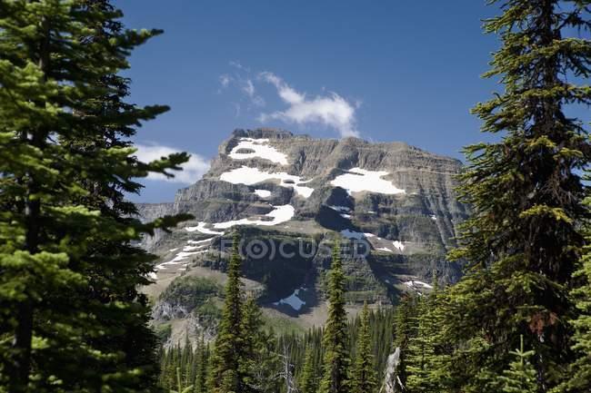 Pic de montagne encadré entre les arbres — Photo de stock