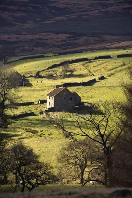 Дом в деревне в долине — стоковое фото