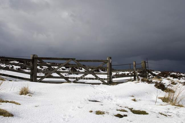 Snowy Field And Fence — Stock Photo