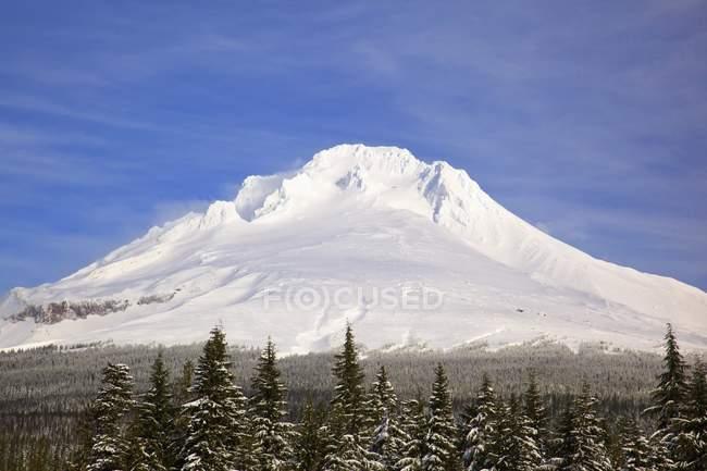 Гора Гуд покрыта снегом — стоковое фото