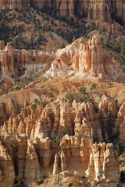 Голки Брайс-Каньйон — стокове фото