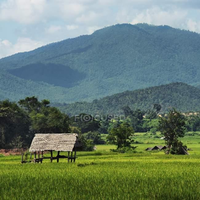 Abrigo de madeira na área montanhosa — Fotografia de Stock