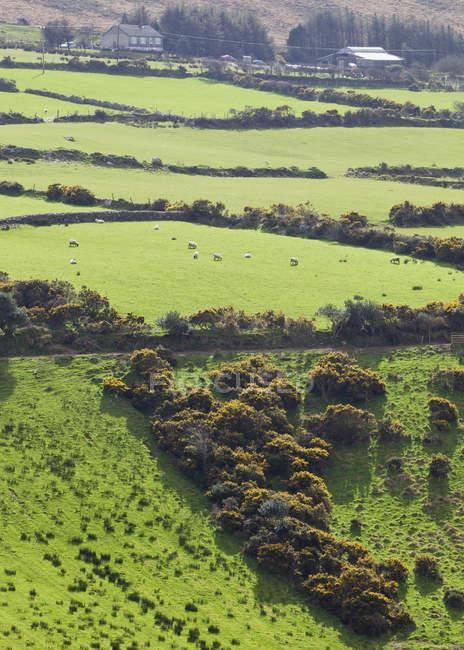 Paisagem típica e terras agrícolas — Fotografia de Stock