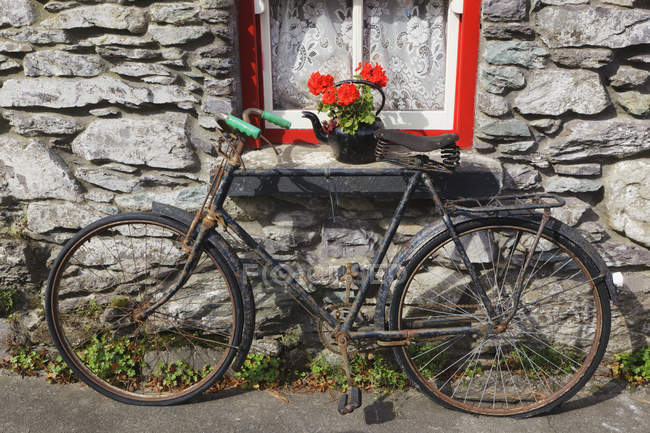 Rusty old bicycle — Stock Photo