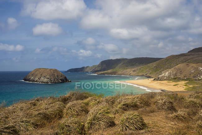Vista da praia leão — Fotografia de Stock