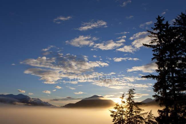 Туман одеяла низменности на рассвете — стоковое фото