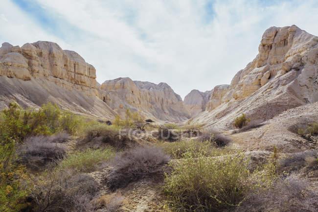 Paesaggio aspro nel deserto della valle del Giordano — Foto stock
