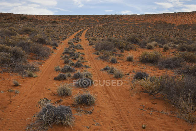 Strada del deserto rosso — Foto stock
