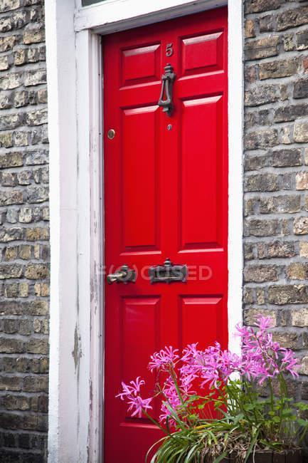 Painted red door — Stock Photo