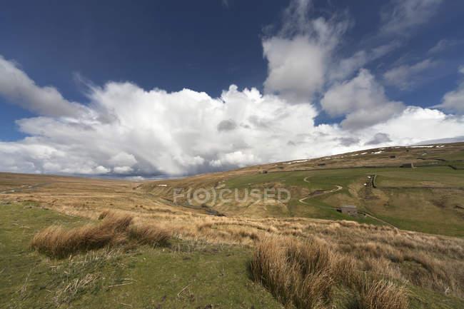 Грэсс-фэшн и катящиеся холмы — стоковое фото