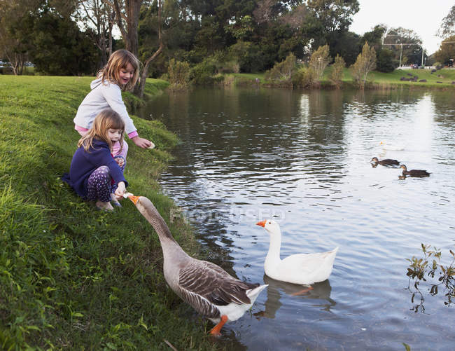 Two Young Girls Feed Birds At The Water's Edge; Currumbin Valley Gold Coast Queensland Australia — Stock Photo