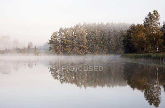 Туман спокійне озеро — стокове фото