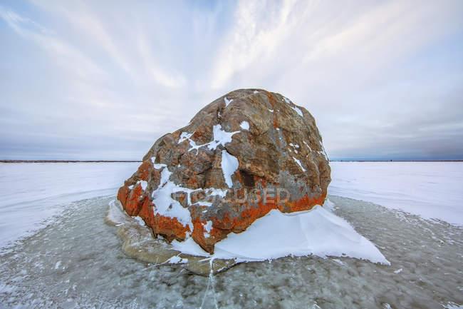 Grande del lichene ha coperto la roccia nel lago ghiacciato — Foto stock