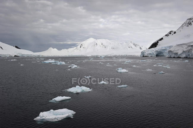 Icebergs in water along the coastline — Stock Photo