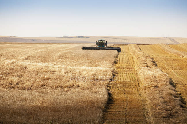 Combine In  Field during daytime — Stock Photo