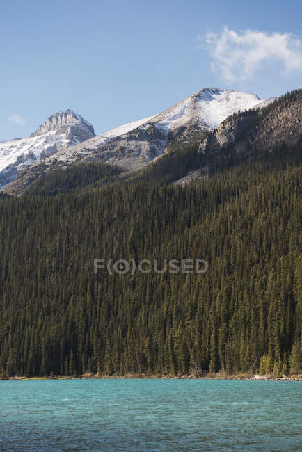 Lake louise forest and rugged rocky mountains — Stock Photo