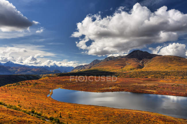 Fall Colors Along Knob Lake — Stock Photo