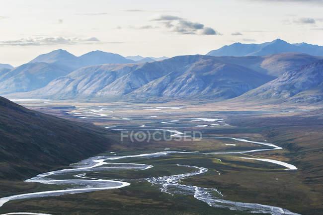 Потоки рек на поле — стоковое фото