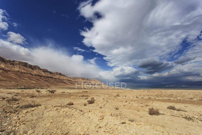 Paisagem árida com solo seco — Fotografia de Stock