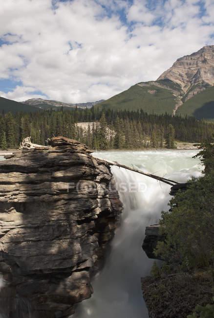 Athabasca cai; Alberta, Canadá — Fotografia de Stock