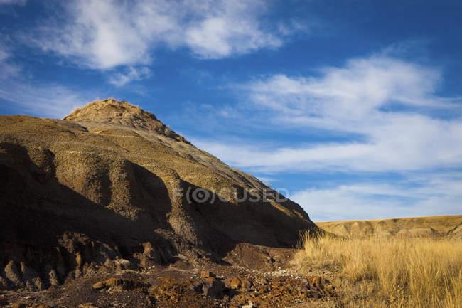 Баррен Хилл и поле с золотой травой — стоковое фото