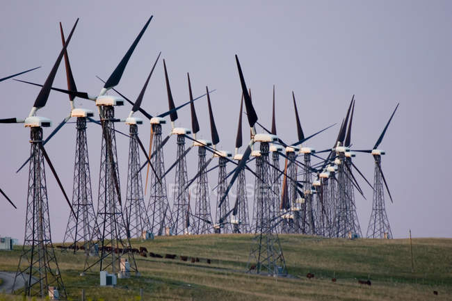 Windmills Used To Generate Electrical Power — Stock Photo