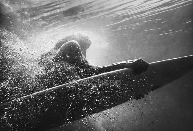 Woman on surfboard under water, monochrome image — Stock Photo