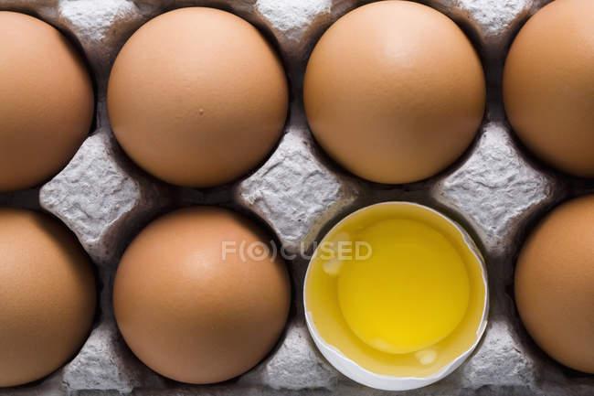 Яйца коричневые на картонной с одной белой обстреляли яйцо открыть показаны кокеткой — стоковое фото