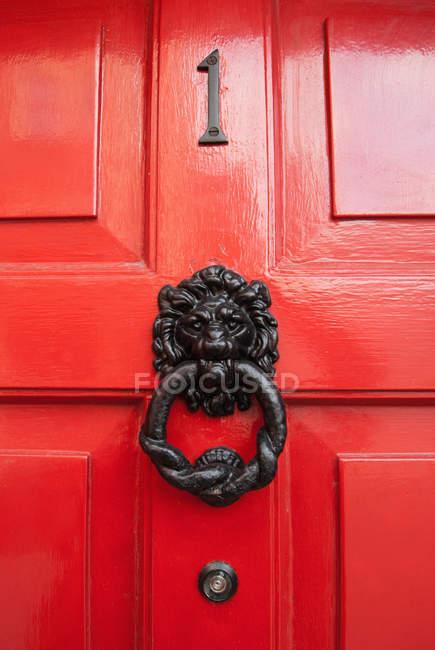 Lion Door Knocker — Stock Photo