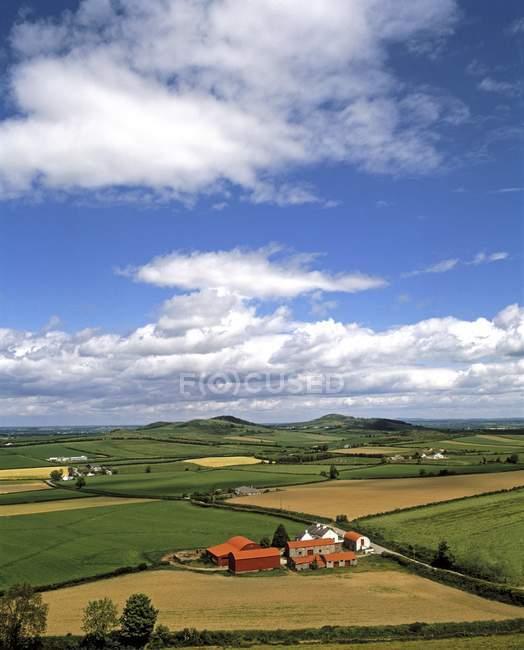 Terres agricoles sur herbe verte — Photo de stock