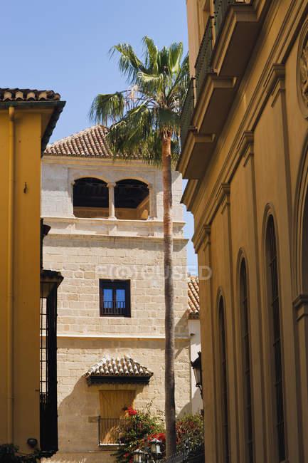 Buenavista палац, який будинків — стокове фото
