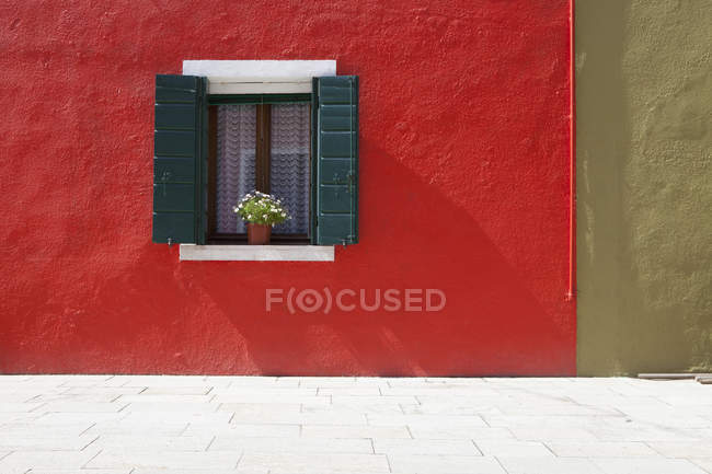 Flower Pot Sits In  Window — Stock Photo