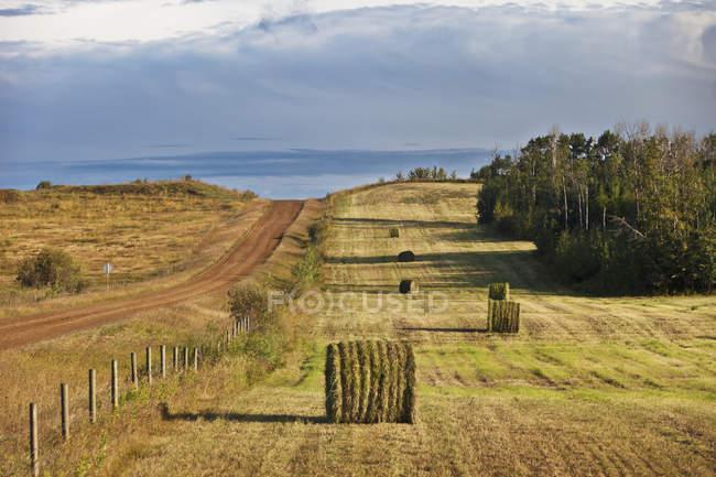 Dirt Road And Hay Bales — Stock Photo
