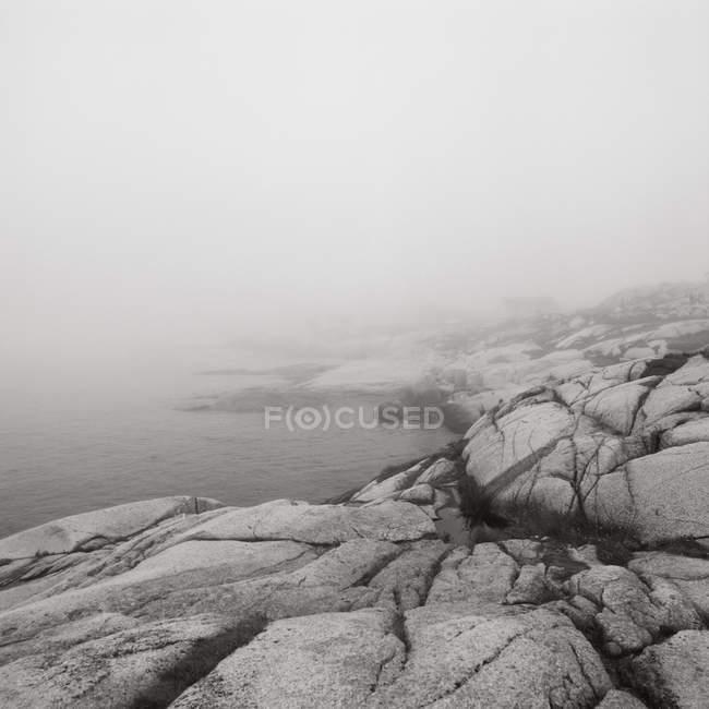Рок-бич в тумане — стоковое фото